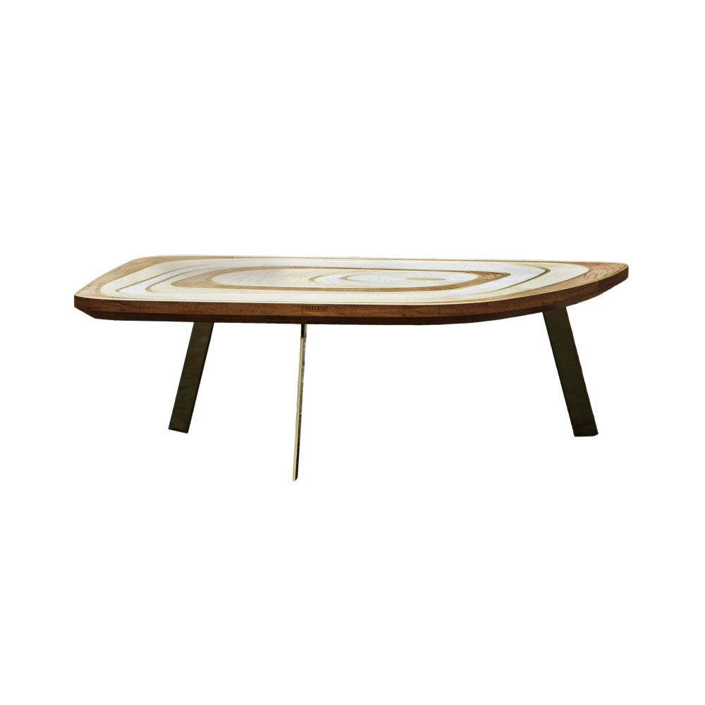 Elegant coffee table Jael